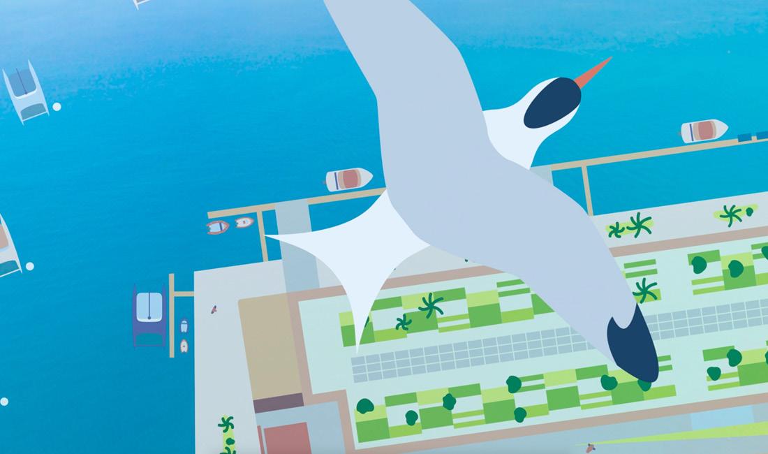 Animation motion design pour le port à sec de Nouméa